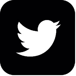 tweeter_icon